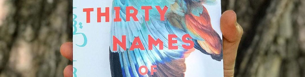 Thirty Names of Night book cover