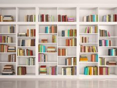 Bright Bookshelves