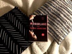 Mirrorland book