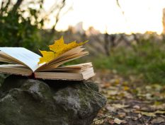 Open book in the fall